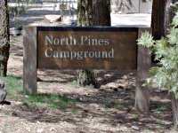 North Pines